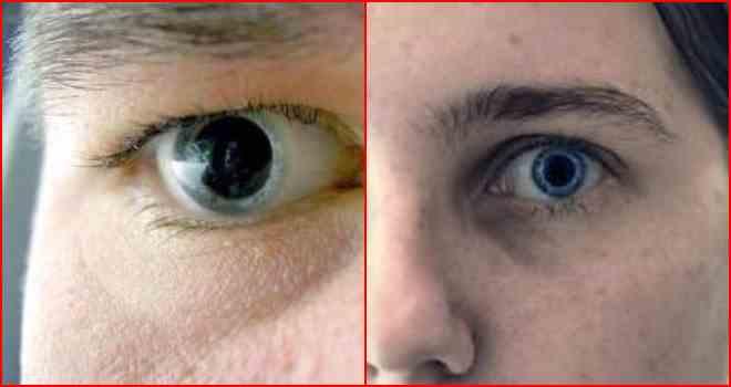 13 02 0 зрачок – одна из важных частей глаза, обеспечивающая попадание световых лучей на сетчатку глаза.
